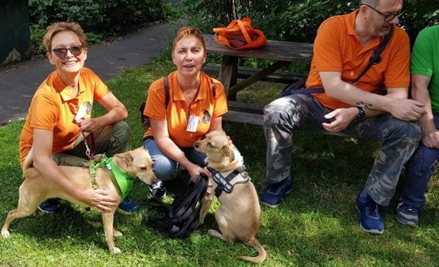 Impressionen vom Sommerfest der Hundepfoten 2019